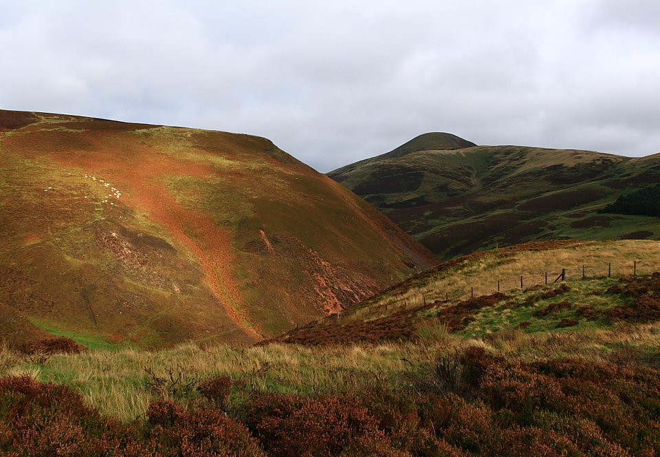 Carnethy Hill from above Green Cleugh, 153 kb